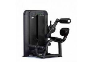 Разгибатель спины Pulse Fitness 605H
